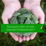 Création d'un site internet : pourquoi choisir un site professionnel ?