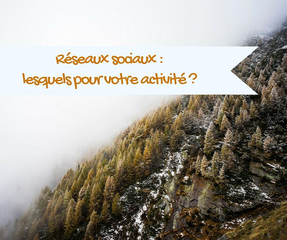 Comment choisir les réseaux sociaux pour votre activité ?