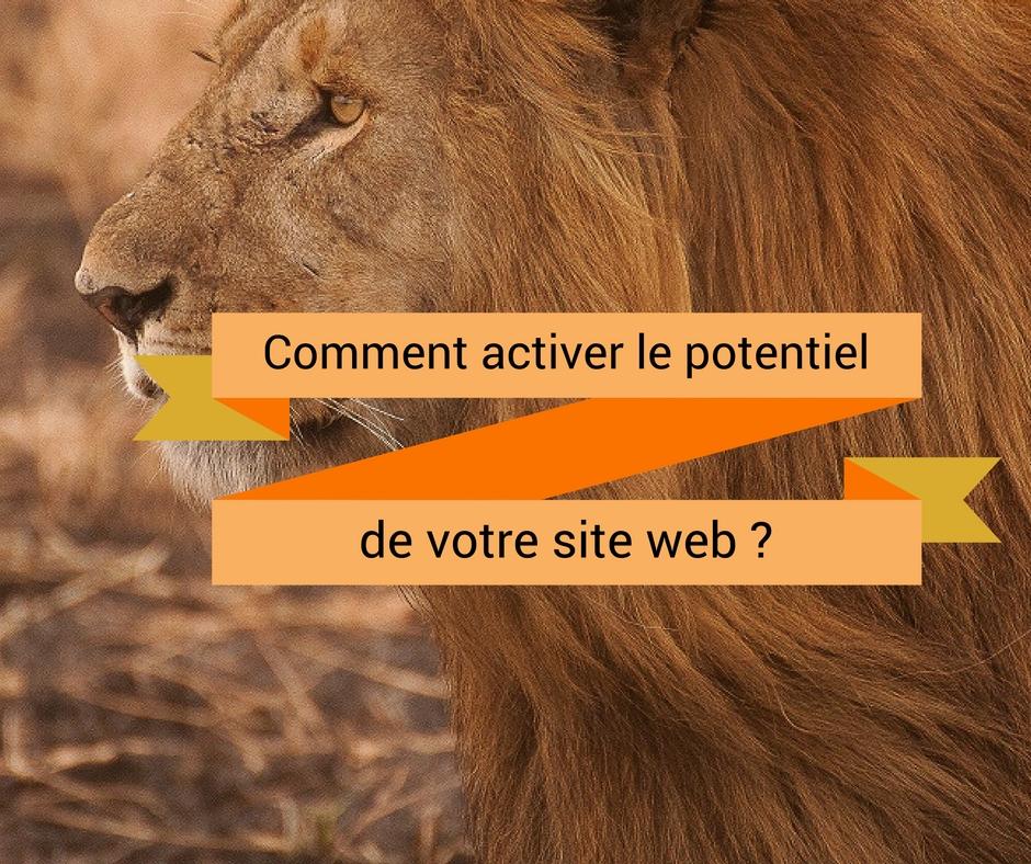 Comment activer le potentiel de votre site web ?