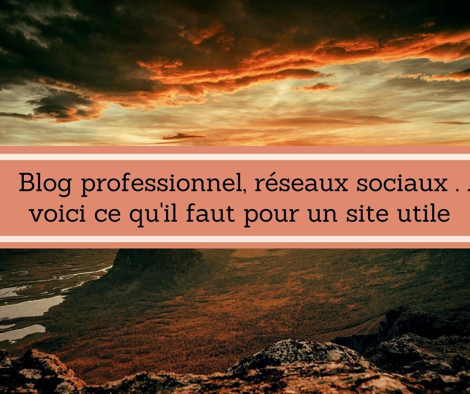 Potentiel d'un site : blog professionnel
